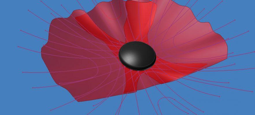 Dublin Poppy Design view of poppy head