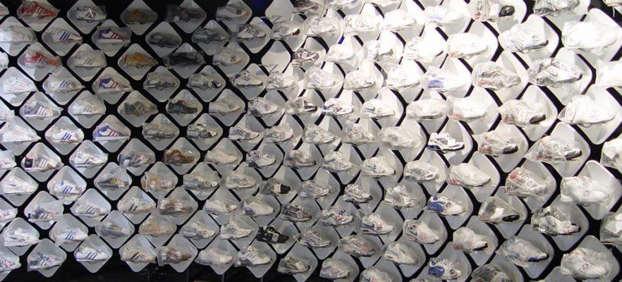 Champion Sports Shoe displays